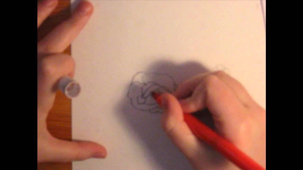 Boccioli Di Rose Da Disegnare Immagini Di Rose Da Colorare Disegni