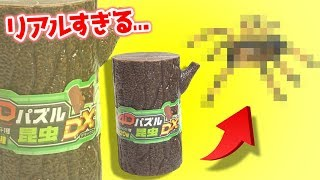 【Super real】4D puzzle insect toys