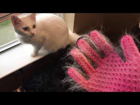 Mr.Peanut's Han-D Glove Pet Grooming Brush and Deshedding Tool