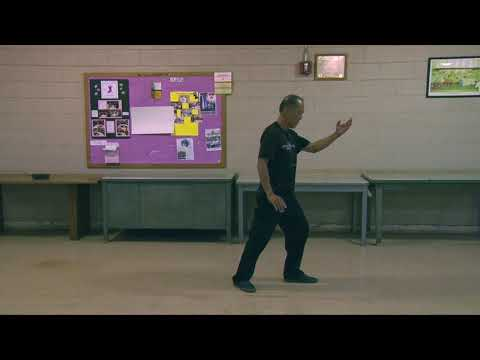 Ken Talks: Martial Arts Intent everydaytaichi lucy Honolulu Hawaii