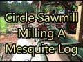 Circle Sawmill Milling Mesquite Log