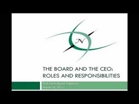 Board & CEO : Roles & Responsibilities
