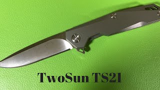 Two Sun TwoSun TS21 knife from China titanium Framelock flipper with D2 blade