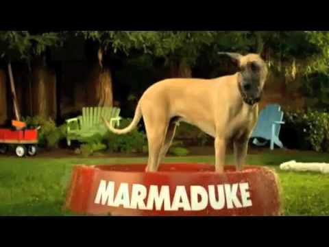 Australian Dog Movie