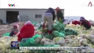 Đi Xuất Khẩu Lao Động Hàn Quốc góc Khuất đầy tủi nhục 2017 - ước mơ đánh đổi đời