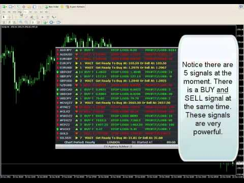 Make 800 pips straddle forex trading on Metatrader