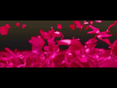 Pink - Secrets - Piano Cover