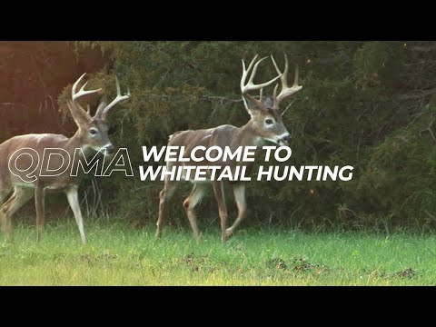 Ep. 1 - Welcome To Whitetail Hunting | QDMA's Deer Hunting 101