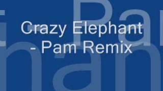 Crazy Elephant Pam Remix