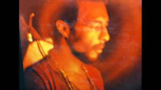 Richie Havens WHAT HAVE WE DONE
