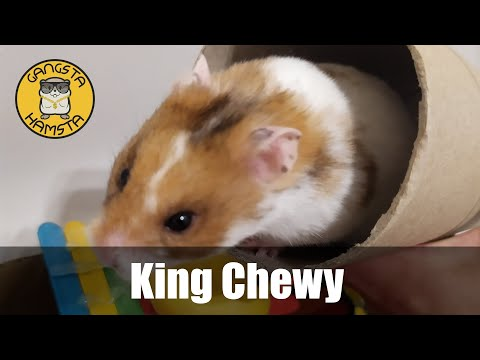 King Chewy