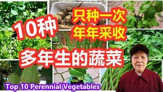 10种多年生的蔬菜, 只需种一次, 每年都有采收, 非常好打理的蔬菜Top 10 Perennial Vegetables