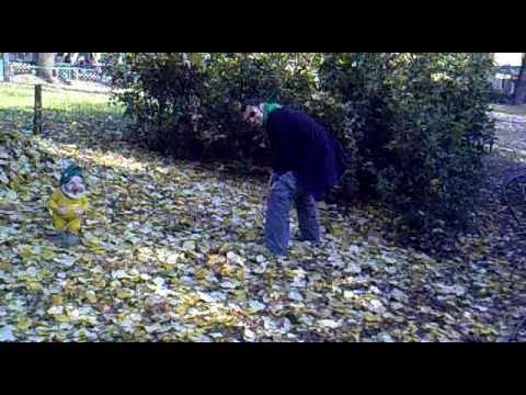 Un uomo violenta un nano da giardino youtube - Pino nano da giardino ...