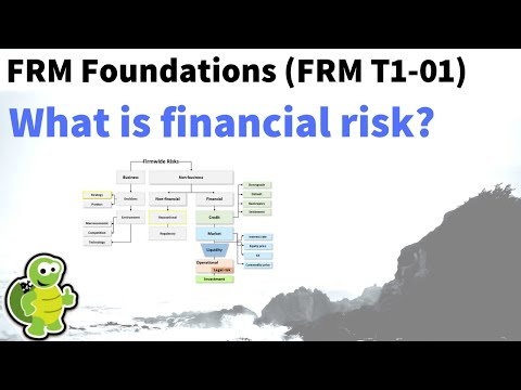 What is financial risk? FRM T1-1