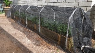 Shade Cloth: Protecting Your Plants From Extreme Summer Heat