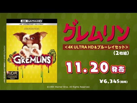 4KUHD/BD【予告編】『グレムリン』11.20リリース