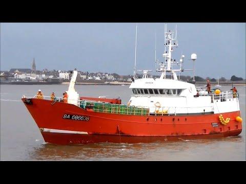 Ibardin Arrive au Port ; Bayonne ; Bateau de Pêche ; Lorient ; Bretagne ; France