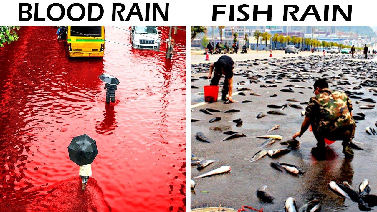 Most Unusual Rains Happened Once on Earth