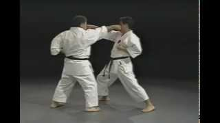 IOGKF Bunkai - Application of Kata