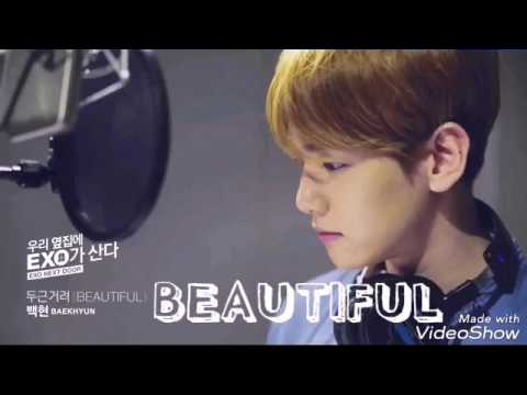 [SUB INDO] BAEKHYUN EXO BEAUTIFUL