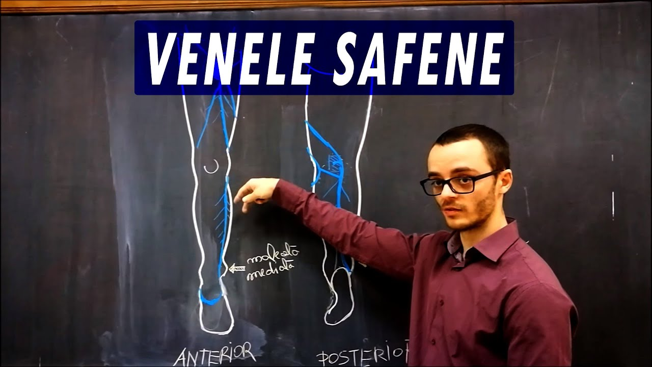 Venele Safene - YouTube