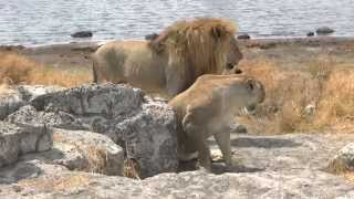 Botswana and Namibia Selfdrive 4x4