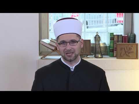 Poslanikovo naslijeđe (27) - mr. Sejid-ef. Strika