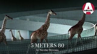 5 METERS 80 -  Elegance - Animation short film by Nicolas Deveaux - France - CGI 3D