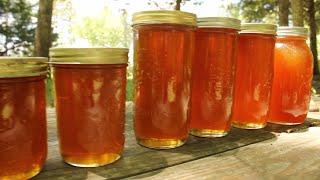 Harvesting DELICIOUS Raw, Organic Honey!