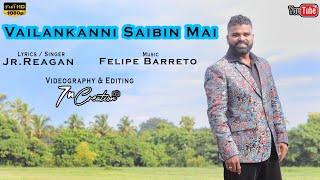 New Konkani Song 2020 - Vailankanni Saibin Mai