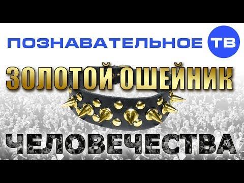 видео: Золотой ошейник человечества (Познавательное ТВ, Валентин Катасонов)