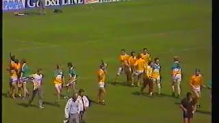 The Best of 1989 Hurling