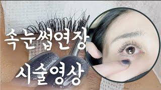 ■속눈썹연장술 배우기■ cc컬 연장/속눈썹리터치/속눈썹…