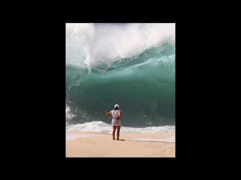 Elle n'a pas survécu à cette vague...