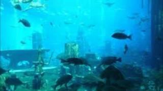 G.G. Anderson - Santa Lucia-Versunken im Meer.wmv