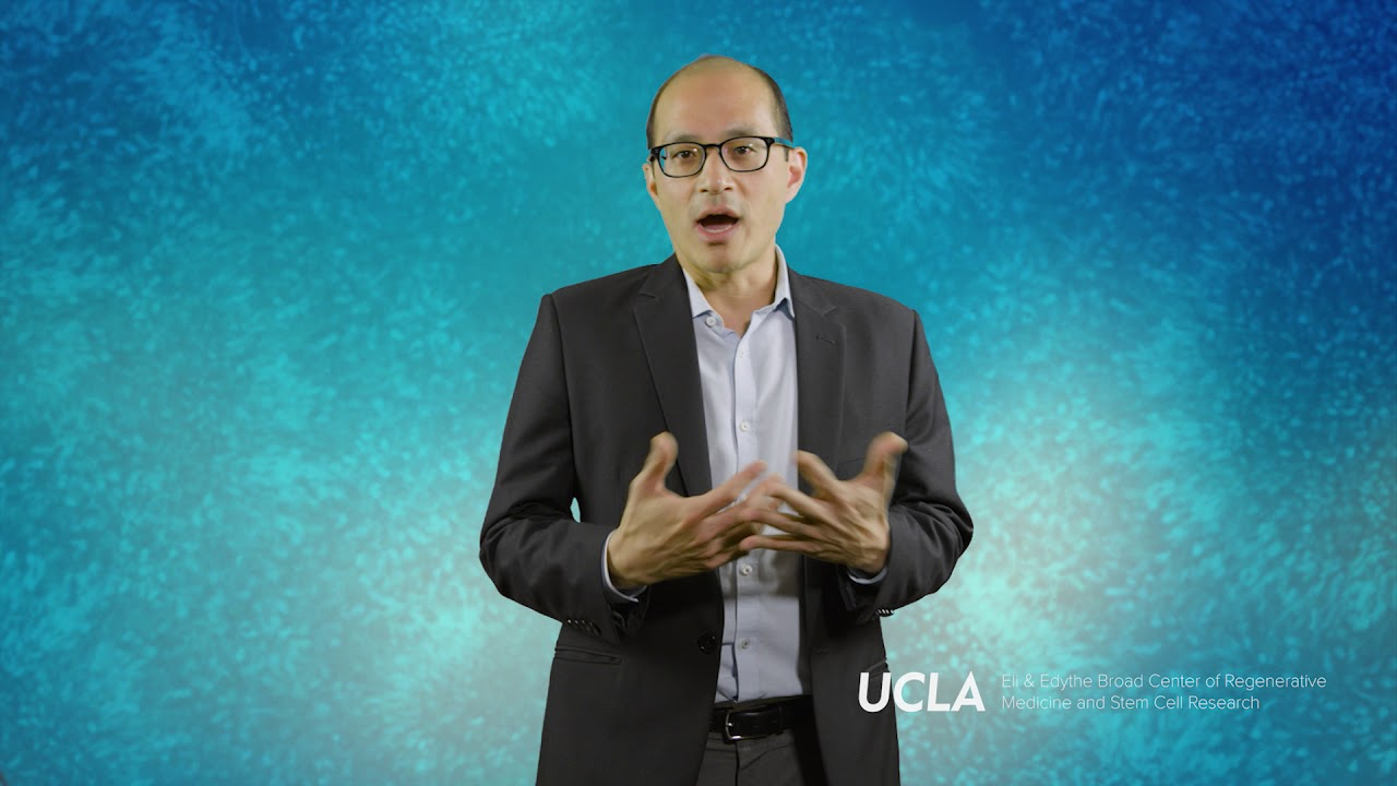 Studying bladder cancer cells to overcome treatment resistance | Arnold  Chin, M D , Ph D