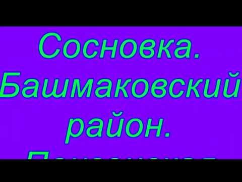 Untitled Avi  Сосновка  Башмаковский район  Пензенская обл