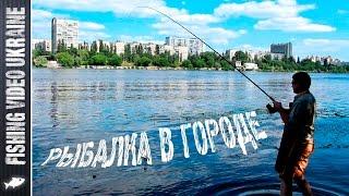 Фидерная рыбалка на Днепре (Русановский пролив, июнь 2016) | 1080p | FishingVideoUkraine