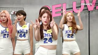 Gambar cover 180725 MOMOLAND Random Play Dance (모모랜드 랜덤 플레이 댄스) - Celuv TV