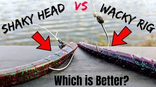 Fishing Challenge - Wacky Rig vs Shaky Head (Which is BETTER?)