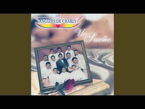 Otra Noche Sin Ti Los Angeles De Charly Letras Mus Br
