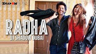 Radha Remix   DJ Shadow Dubai   Jab Harry Met Sejal