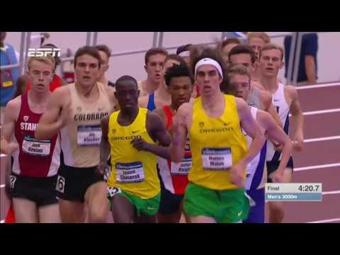 NCAA Indoor Men's 3000 Meters
