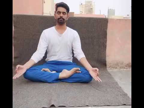 how to do padmasana  lotus pose  yoga classes