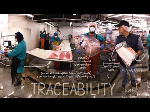 Traceability | The Lexicon Of Sustainability | PBS Food
