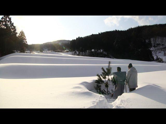 日本酒を造る人々を追ったドキュメンタリー!映画『一献の系譜』予告編