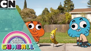 The Amazing World of Gumball | Gumball Hunts For Banana Barbara | Cartoon Network UK