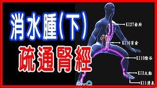 【苦行老師】消水腫(下)疏通腎經