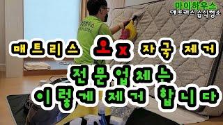 매트리스 습식청소 방법 공개