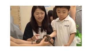 Aristle Zoo 動物愛護及體驗日